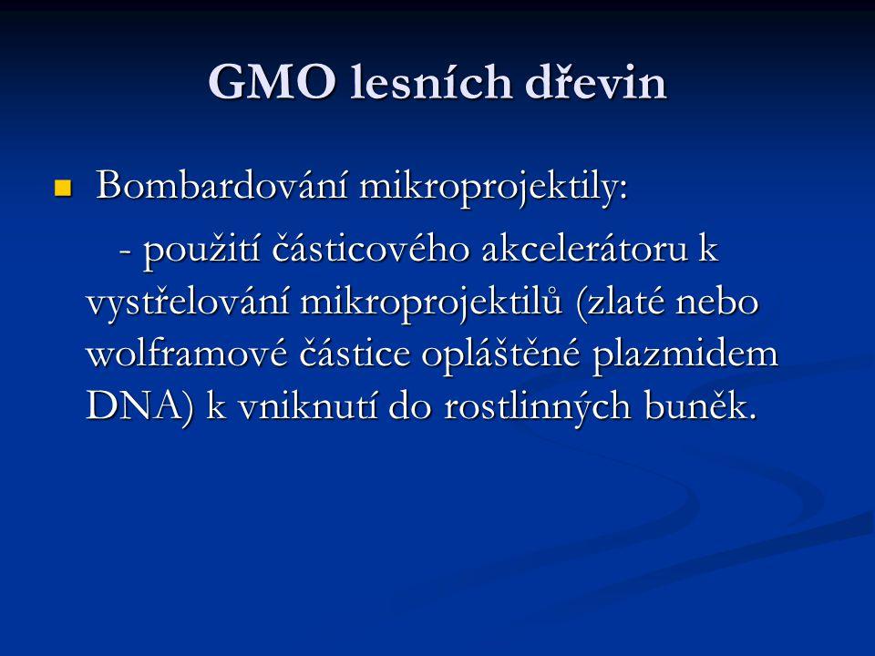 GMO lesních dřevin Bombardování mikroprojektily: