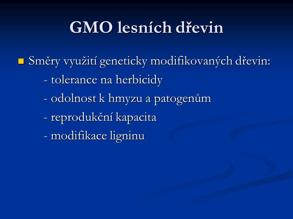 GMO lesních dřevin Směry využití geneticky modifikovaných dřevin:
