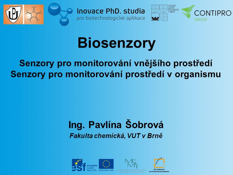 Ing. Pavlína Šobrová Fakulta chemická, VUT v Brně