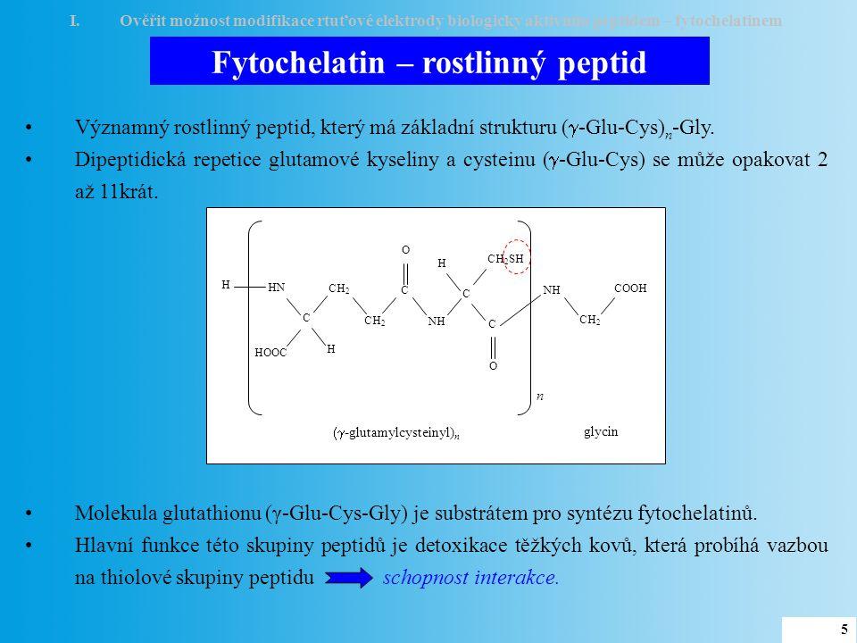 Fytochelatin – rostlinný peptid