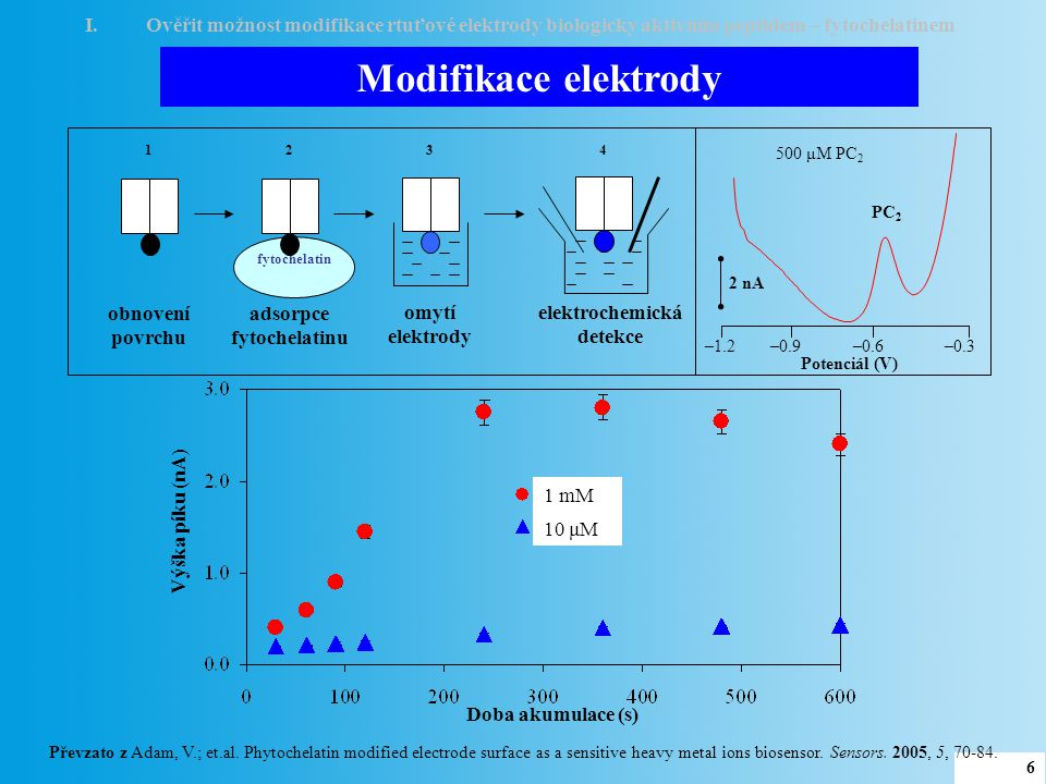 adsorpce fytochelatinu elektrochemická detekce