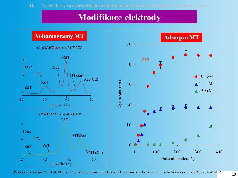 Modifikace elektrody Voltamogramy MT Adsorpce MT