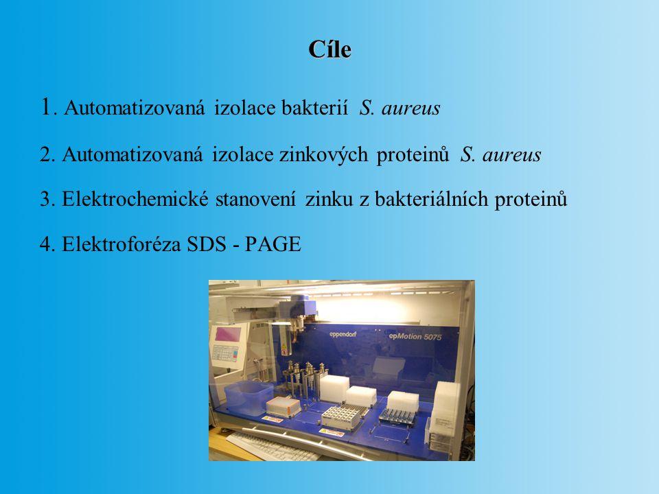 1. Automatizovaná izolace bakterií S. aureus