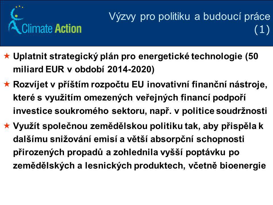 Výzvy pro politiku a budoucí práce (1)