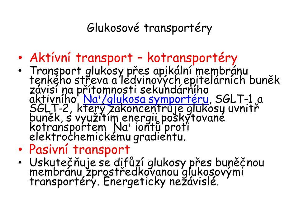 Glukosové transportéry