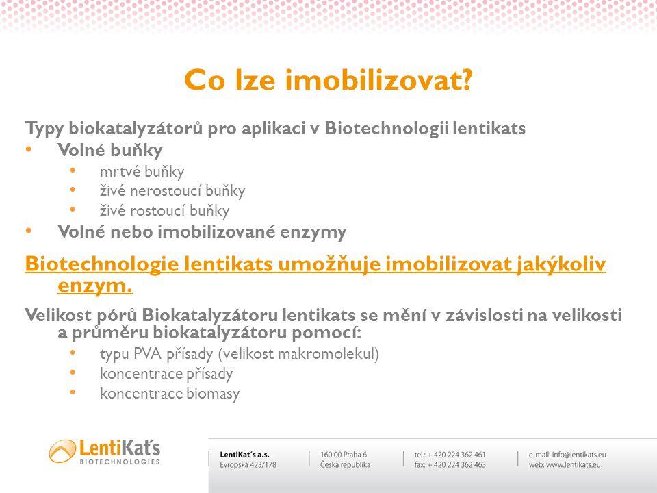 Co lze imobilizovat Typy biokatalyzátorů pro aplikaci v Biotechnologii lentikats. Volné buňky. mrtvé buňky.