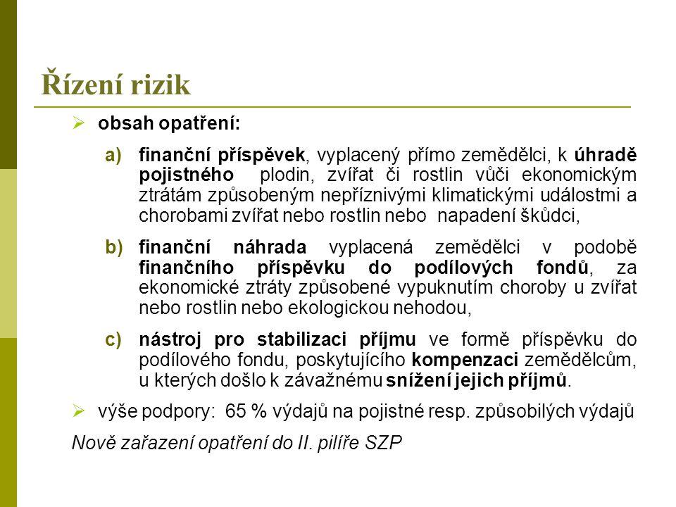 Řízení rizik obsah opatření: