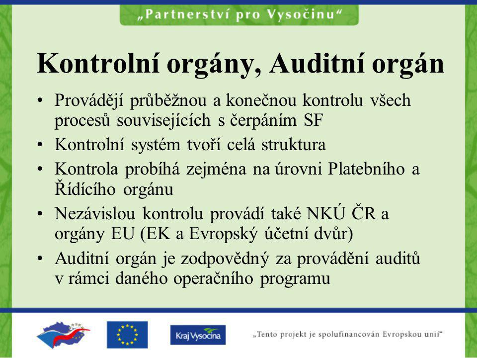 Kontrolní orgány, Auditní orgán