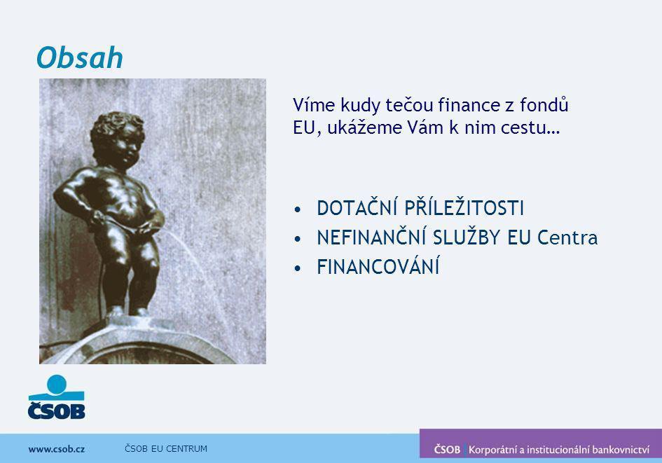 Obsah DOTAČNÍ PŘÍLEŽITOSTI NEFINANČNÍ SLUŽBY EU Centra FINANCOVÁNÍ