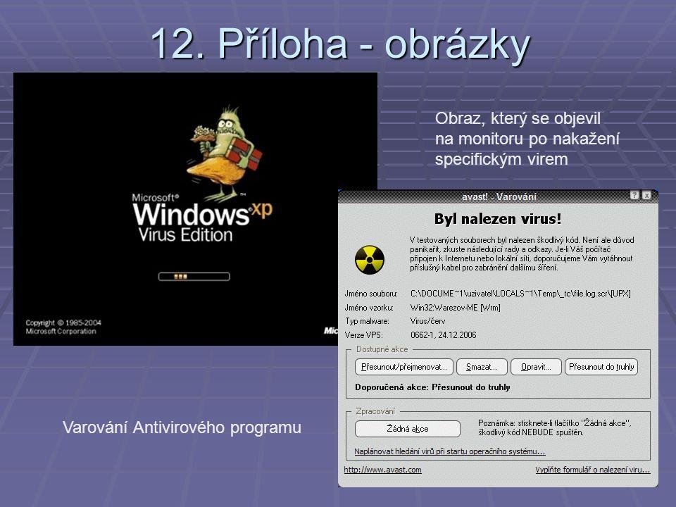 12. Příloha - obrázky Obraz, který se objevil na monitoru po nakažení specifickým virem.