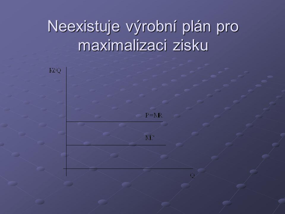 Neexistuje výrobní plán pro maximalizaci zisku