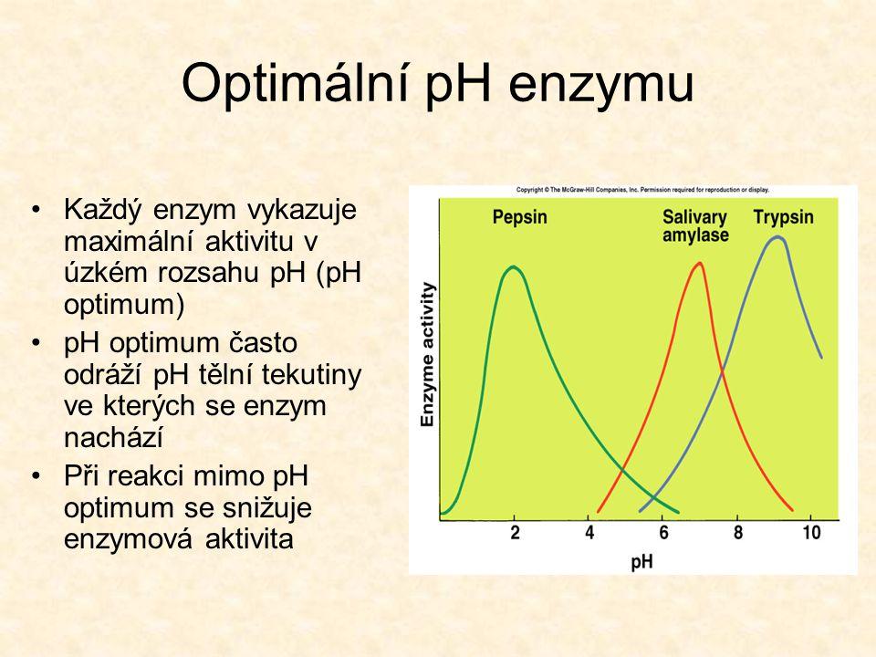 Optimální pH enzymu Každý enzym vykazuje maximální aktivitu v úzkém rozsahu pH (pH optimum)