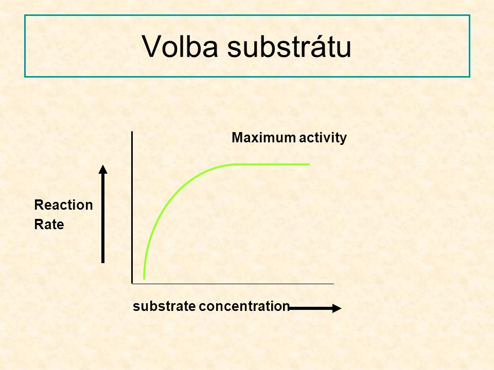 Volba substrátu Maximum activity Reaction Rate substrate concentration