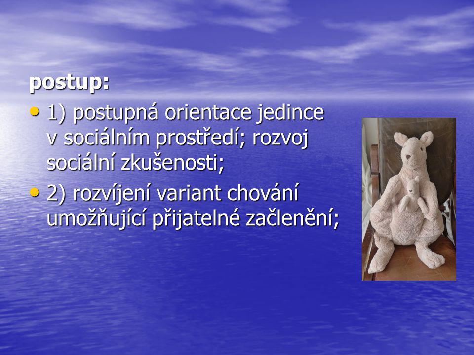 postup: 1) postupná orientace jedince v sociálním prostředí; rozvoj sociální zkušenosti;