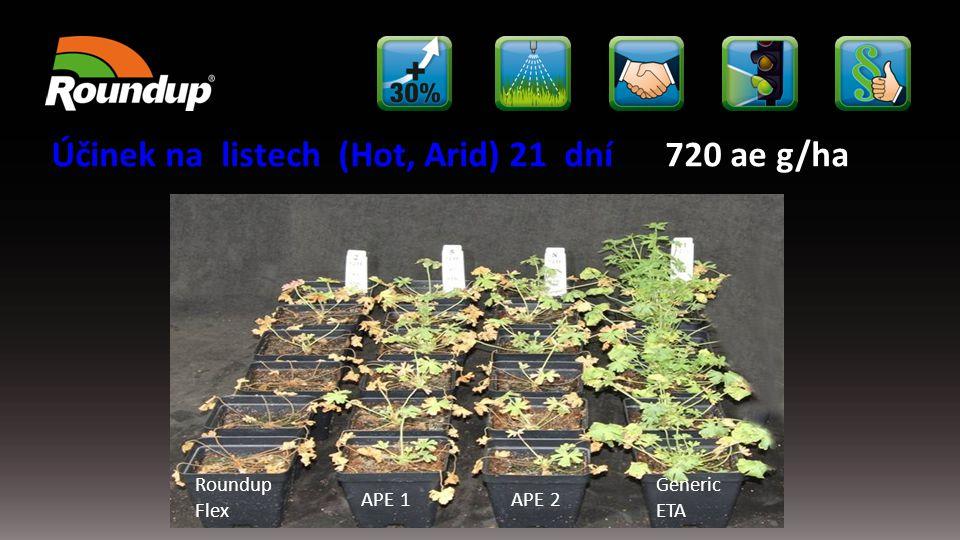 Účinek na listech (Hot, Arid) 21 dní 720 ae g/ha