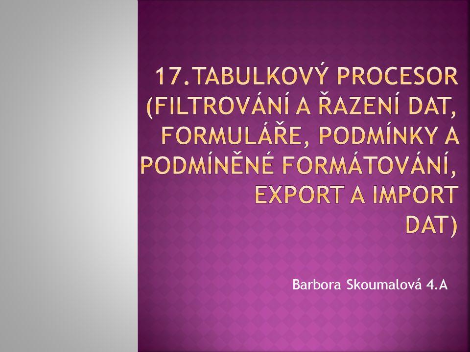 17.Tabulkový procesor (filtrování a řazení dat, formuláře, podmínky a podmíněné formátování, export a import dat)