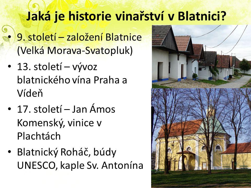 Jaká je historie vinařství v Blatnici