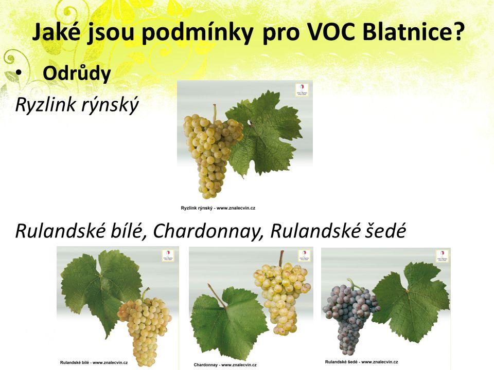 Jaké jsou podmínky pro VOC Blatnice