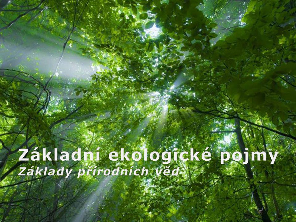 Základní ekologické pojmy