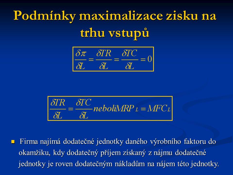 Podmínky maximalizace zisku na trhu vstupů