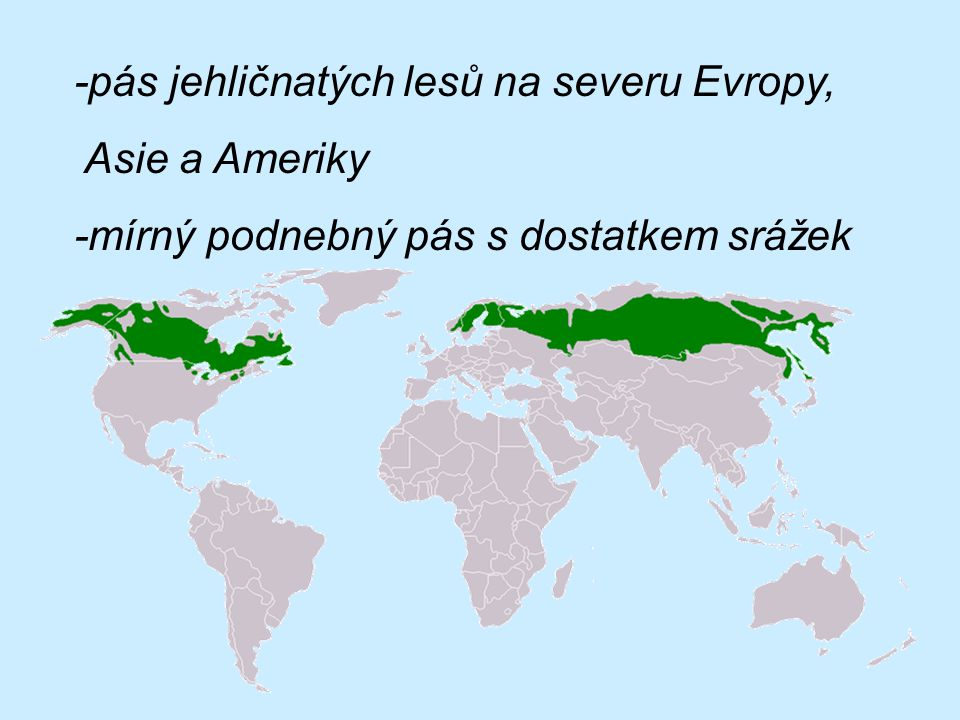 -pás jehličnatých lesů na severu Evropy,