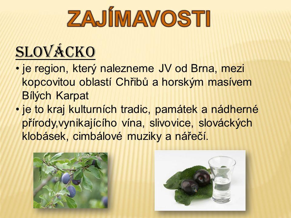 ZAJÍMAVOSTI Slovácko je region, který nalezneme JV od Brna, mezi