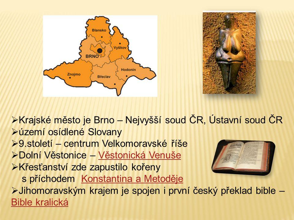 Krajské město je Brno – Nejvyšší soud ČR, Ústavní soud ČR