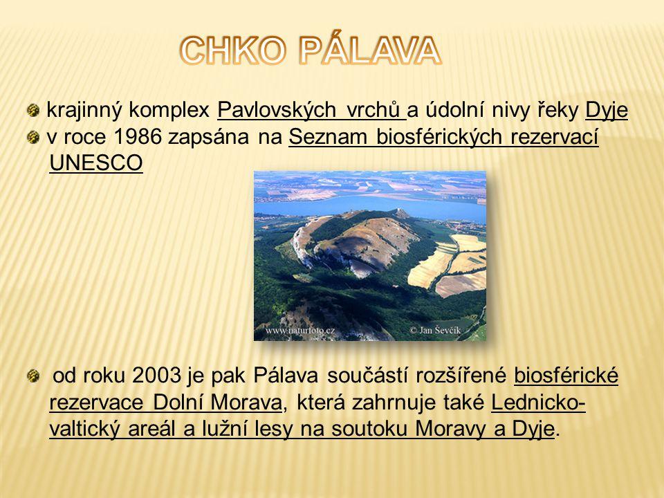 CHKO PÁLAVA krajinný komplex Pavlovských vrchů a údolní nivy řeky Dyje