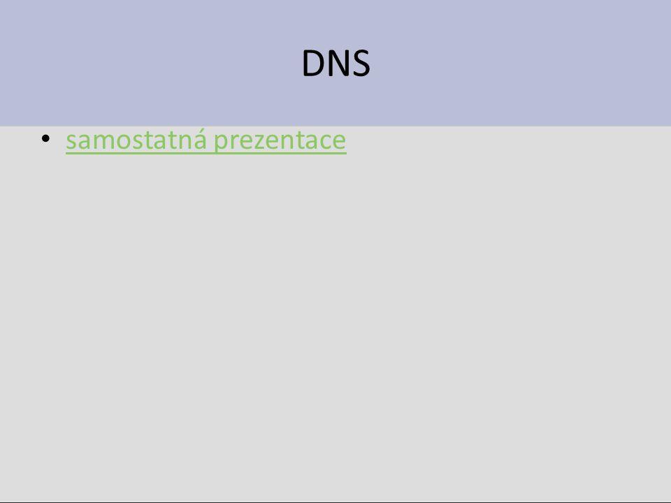 DNS samostatná prezentace