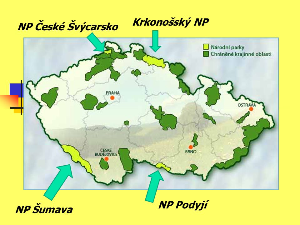 Krkonošský NP NP České Švýcarsko NP Podyjí NP Šumava