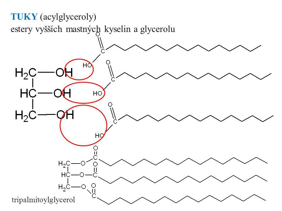 estery vyšších mastných kyselin a glycerolu
