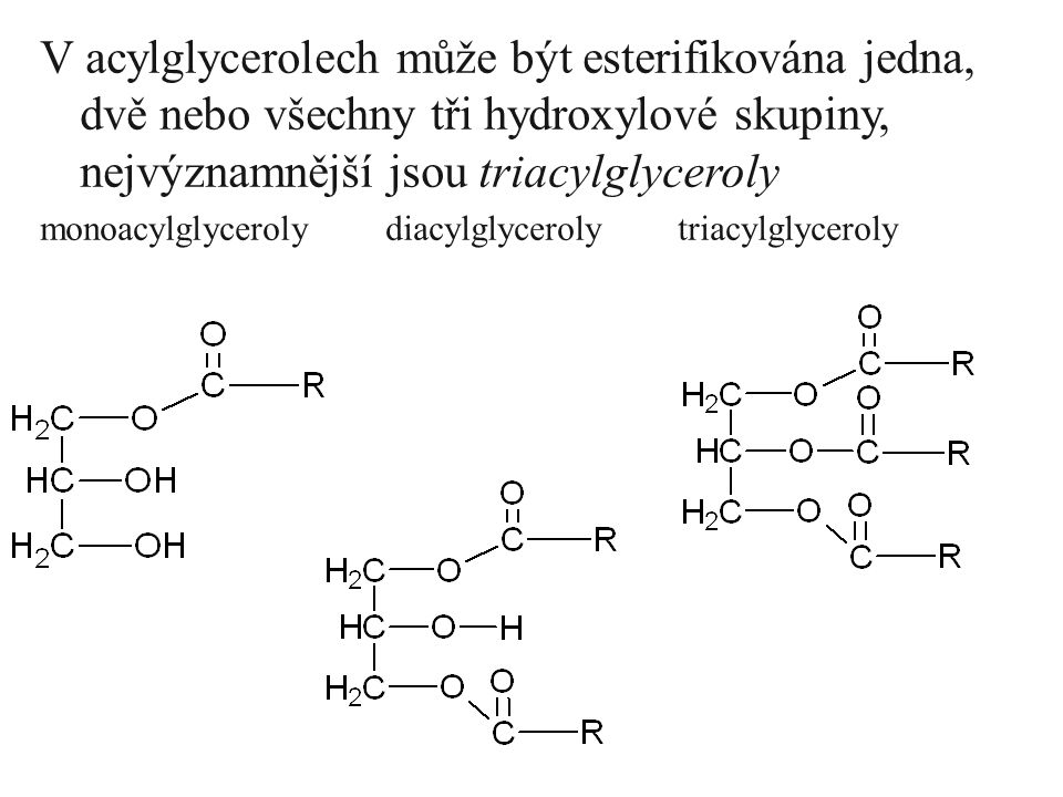 V acylglycerolech může být esterifikována jedna, dvě nebo všechny tři hydroxylové skupiny, nejvýznamnější jsou triacylglyceroly