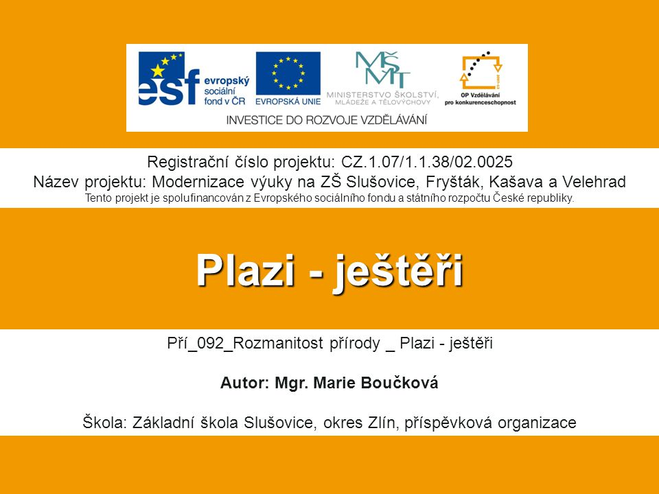 Autor: Mgr. Marie Boučková