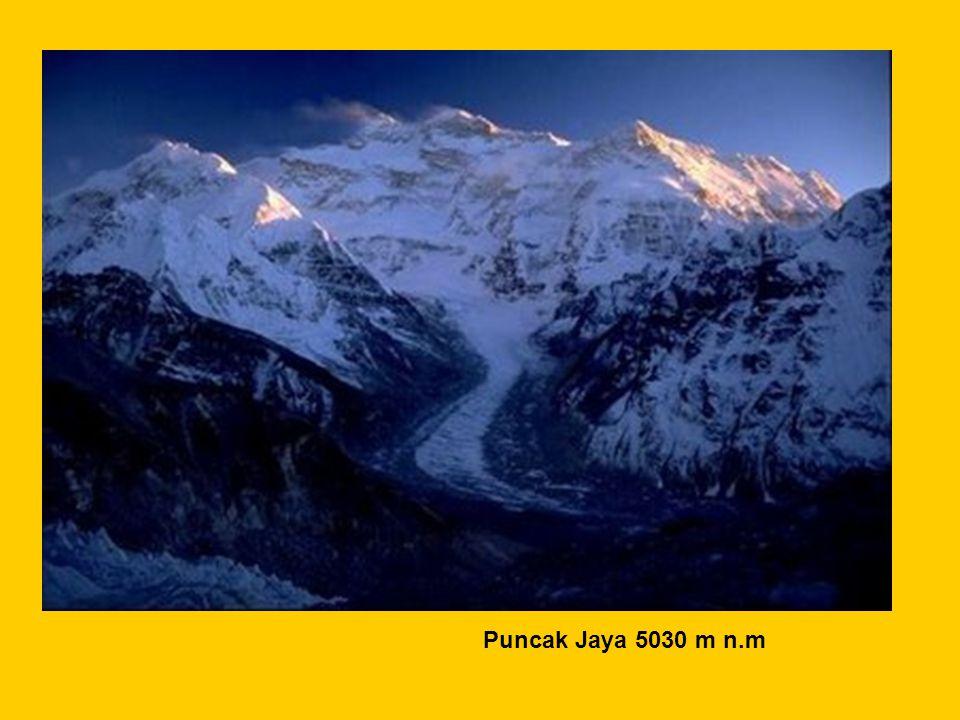 Puncak Jaya 5030 m n.m