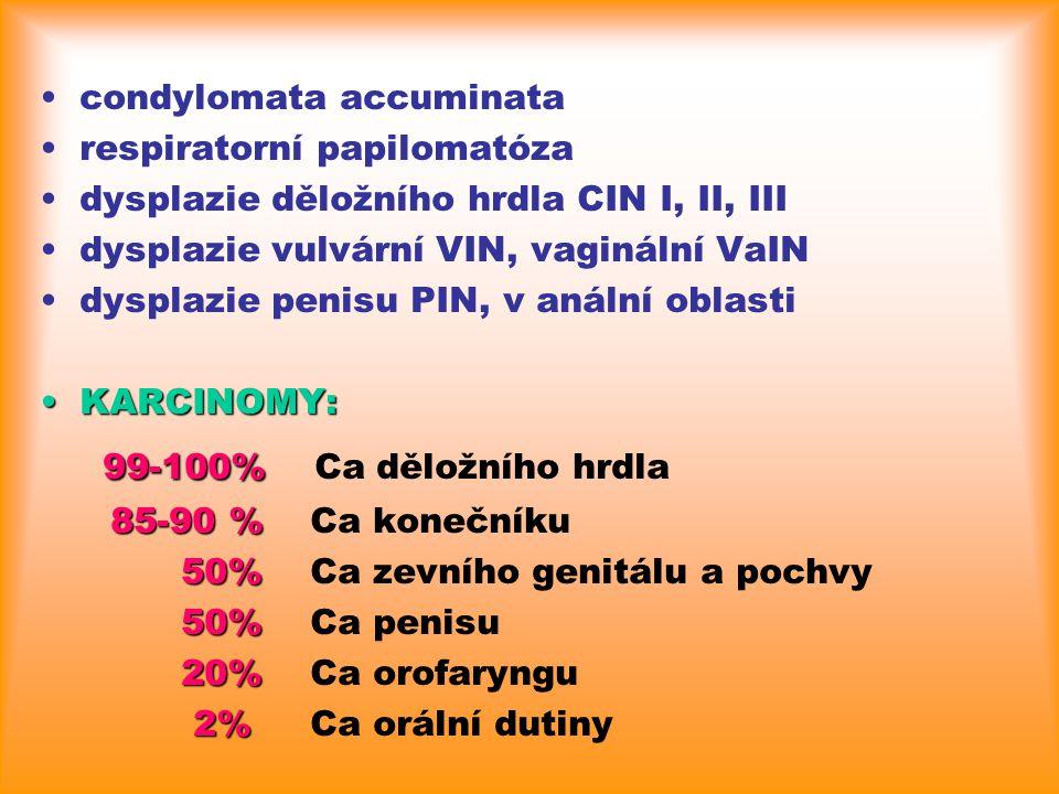 99-100% Ca děložního hrdla condylomata accuminata