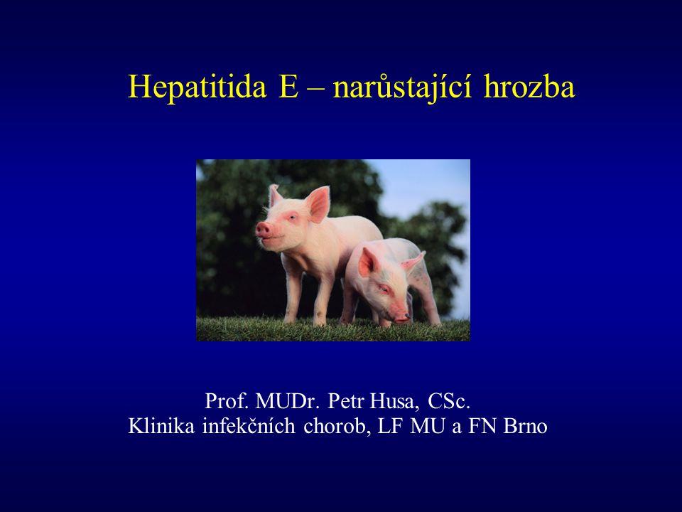 Hepatitida E – narůstající hrozba