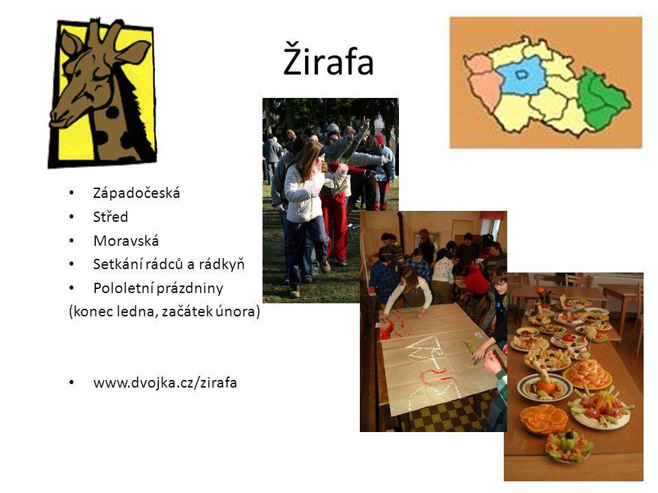 Žirafa Západočeská Střed Moravská Setkání rádců a rádkyň