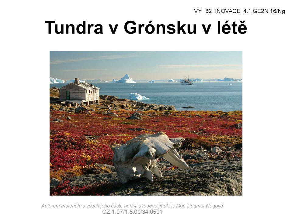 Tundra v Grónsku v létě VY_32_INOVACE_4.1.GE2N.16/Ng