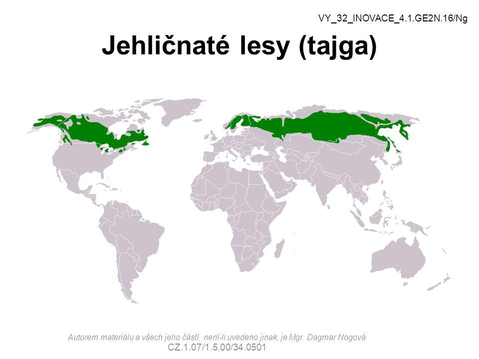 Jehličnaté lesy (tajga)