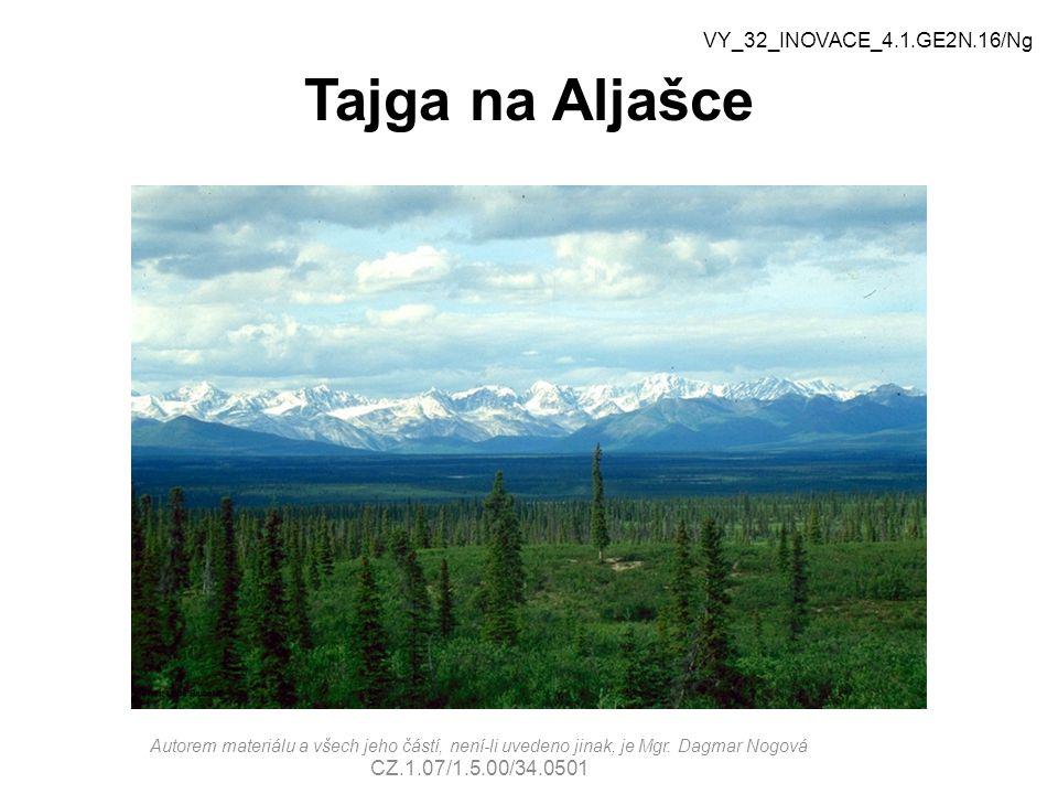 Tajga na Aljašce VY_32_INOVACE_4.1.GE2N.16/Ng