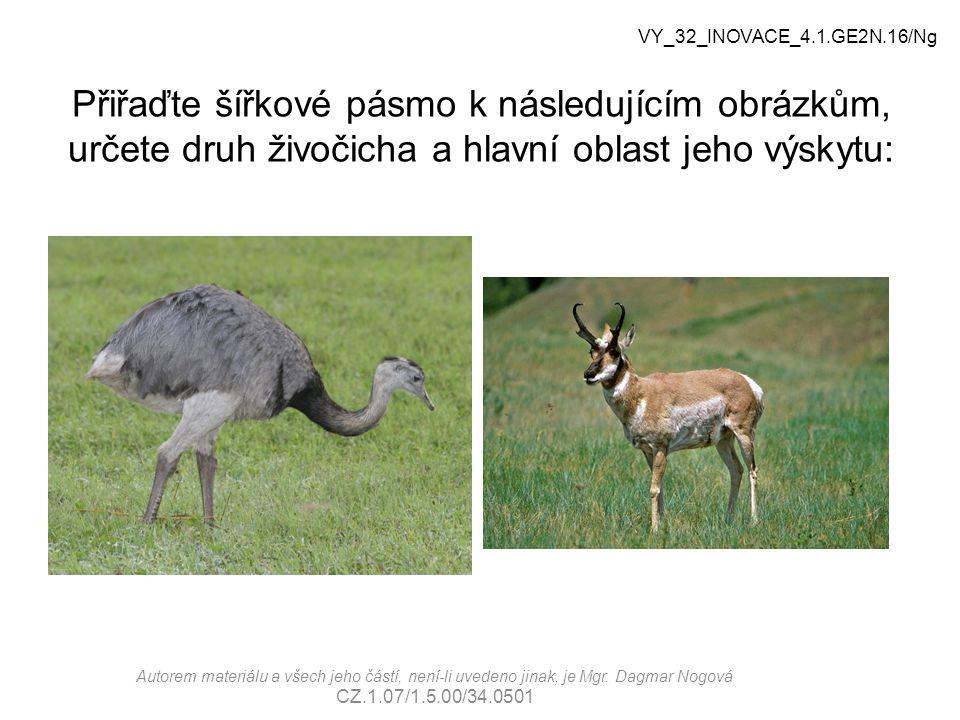 VY_32_INOVACE_4.1.GE2N.16/Ng Přiřaďte šířkové pásmo k následujícím obrázkům, určete druh živočicha a hlavní oblast jeho výskytu: