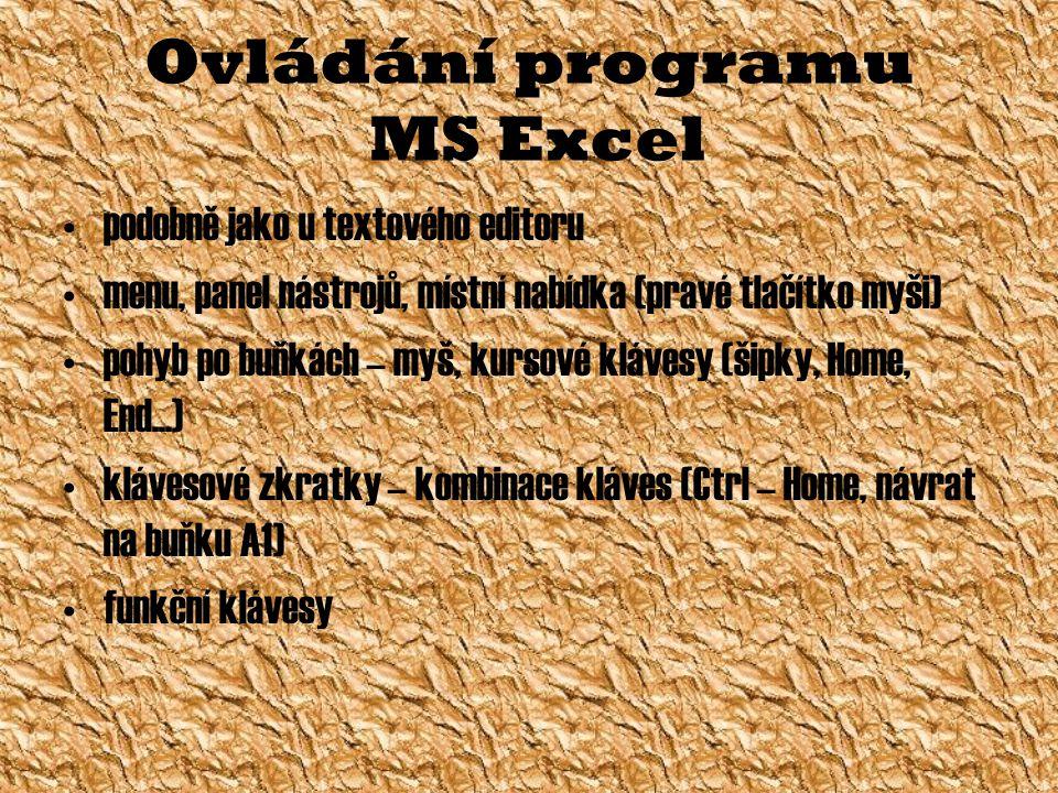 Ovládání programu MS Excel