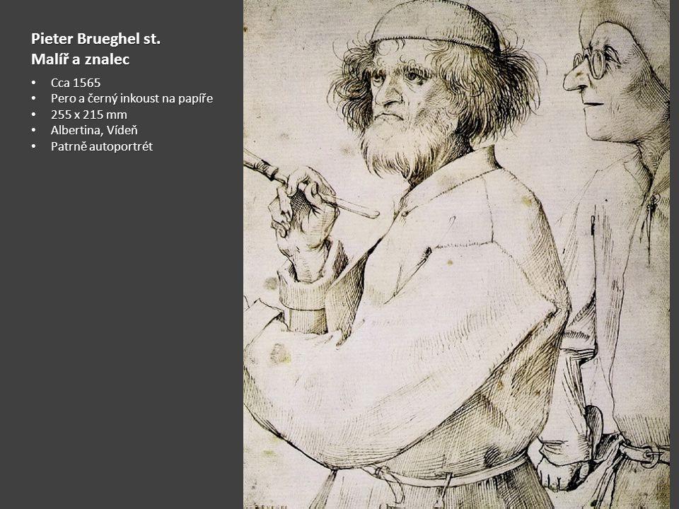 Pieter Brueghel st. Malíř a znalec Cca 1565