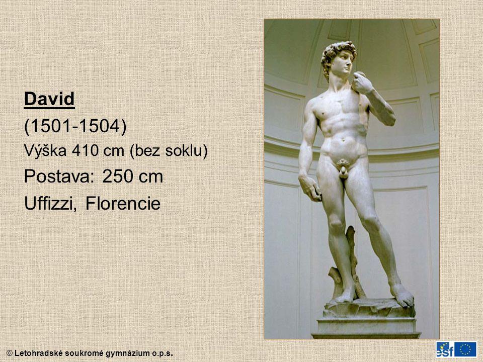 David (1501-1504) Postava: 250 cm Uffizzi, Florencie