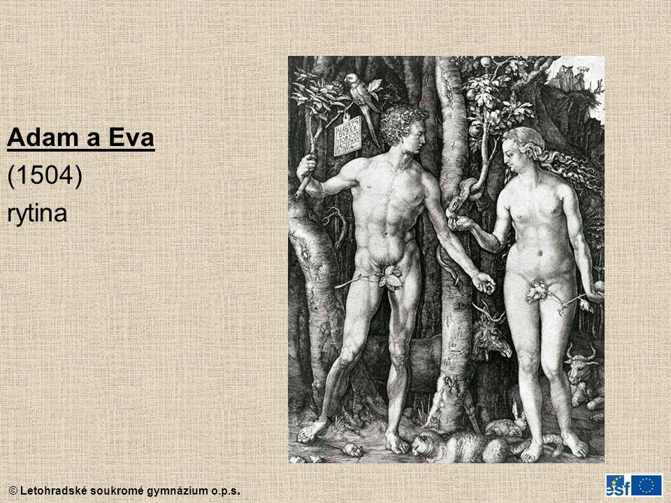 Adam a Eva (1504) rytina
