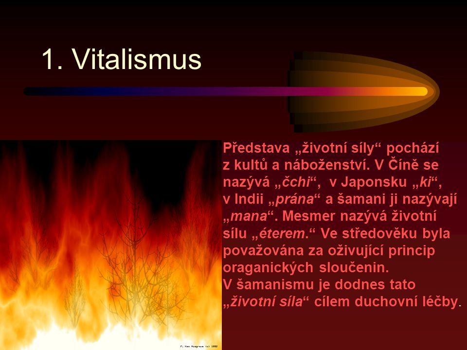 1. Vitalismus
