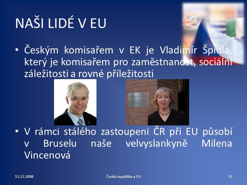 NAŠI LIDÉ V EU Českým komisařem v EK je Vladimír Špidla, který je komisařem pro zaměstnanost, sociální záležitosti a rovné příležitosti.