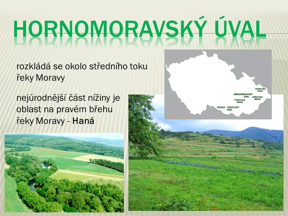HORNOMORAVSKÝ ÚVAL rozkládá se okolo středního toku řeky Moravy