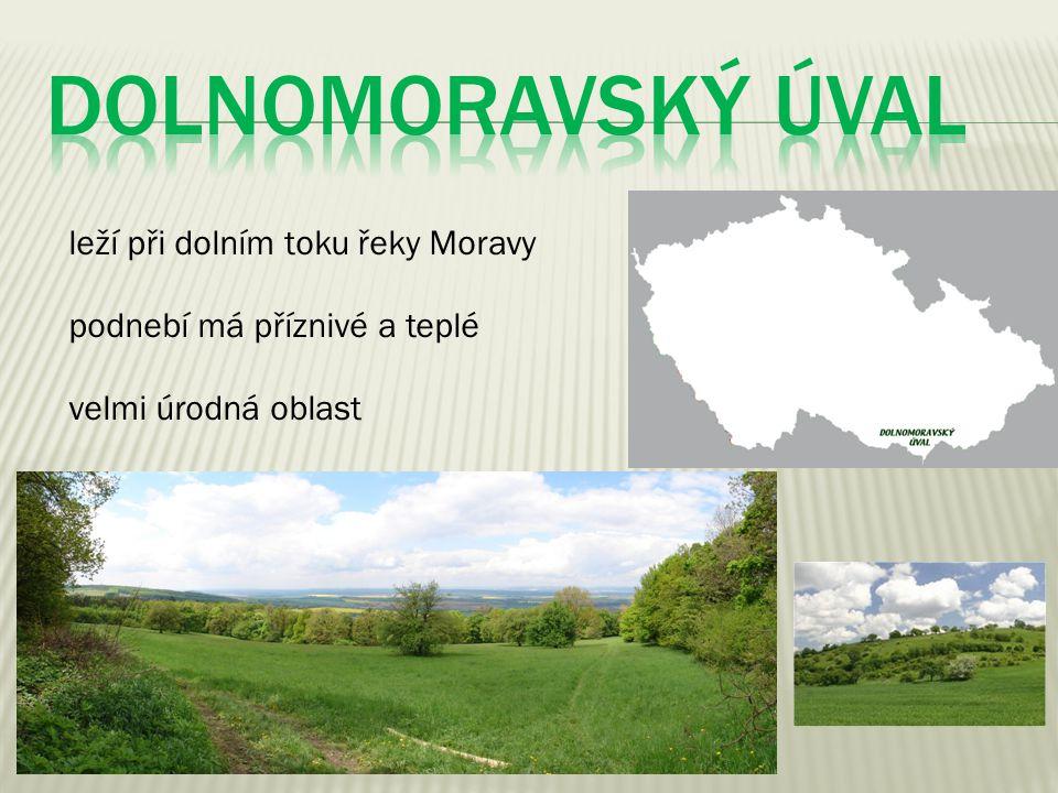 DOLNOMORAVSKÝ ÚVAL leží při dolním toku řeky Moravy