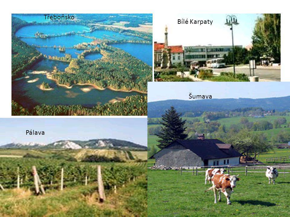 Třeboňsko Bílé Karpaty Šumava Pálava